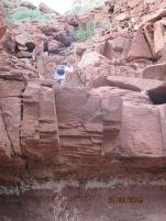 Glen climbs the block boulders.